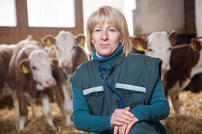Landwirtschaftliche Nutztiere